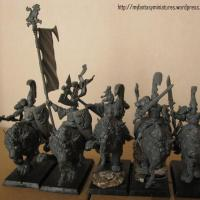 High Elves: Lion knights of Chrace